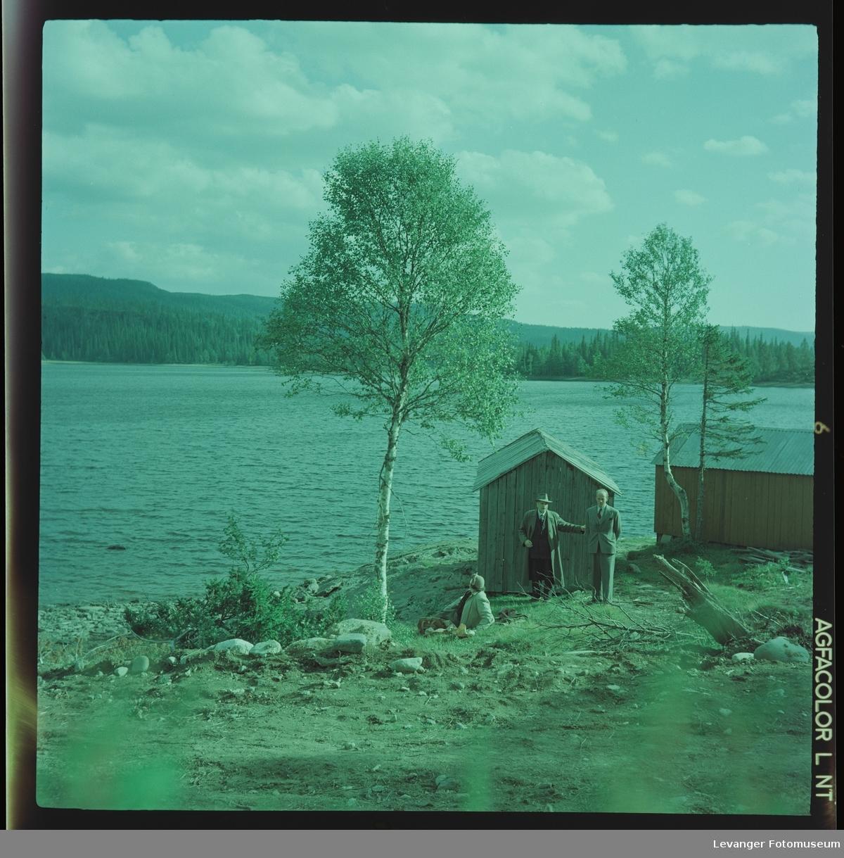 Familen Renbjør på tur ved Grønningen.