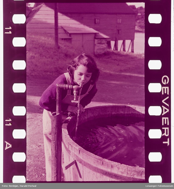 Jente drikke av vannposten i Sjøgata ved melkefabrikken.