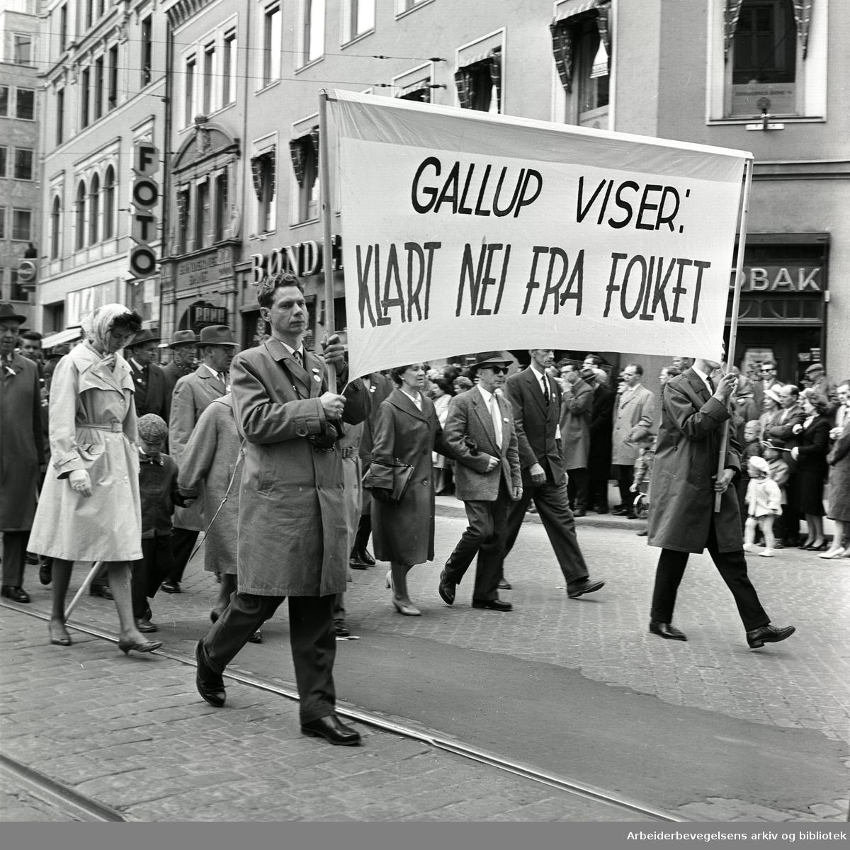 """1. mai 1962 i Oslo.Demonstrasjonstog arrangert av """"Faglig aksjon mot Fellesmarkedet"""" med støtte fra Sosialistisk Folkeparti (SF) og Norges kommunistiske parti (NKP)..Parole: Gallup viser: Klart nei fra folket.."""