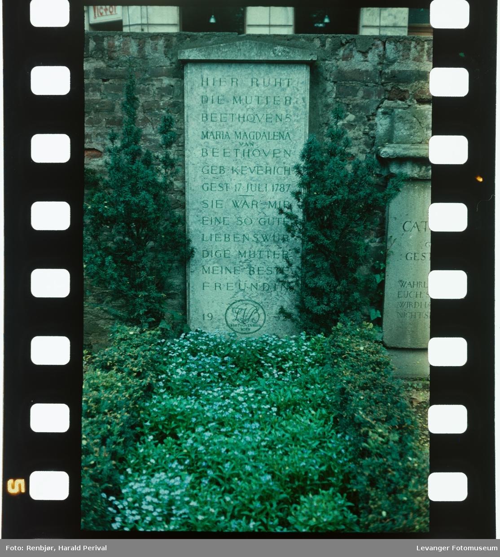Ludvig van Beethovens familegrav.