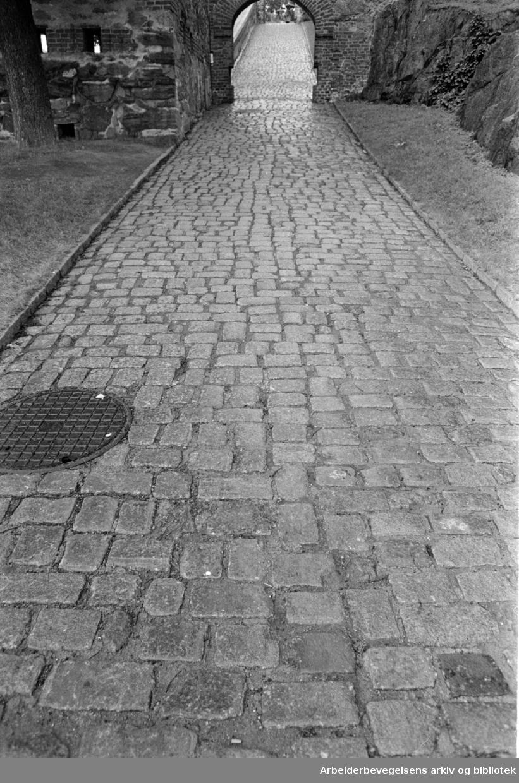 Den brolagte veien mot Akershus slott,.august 1966