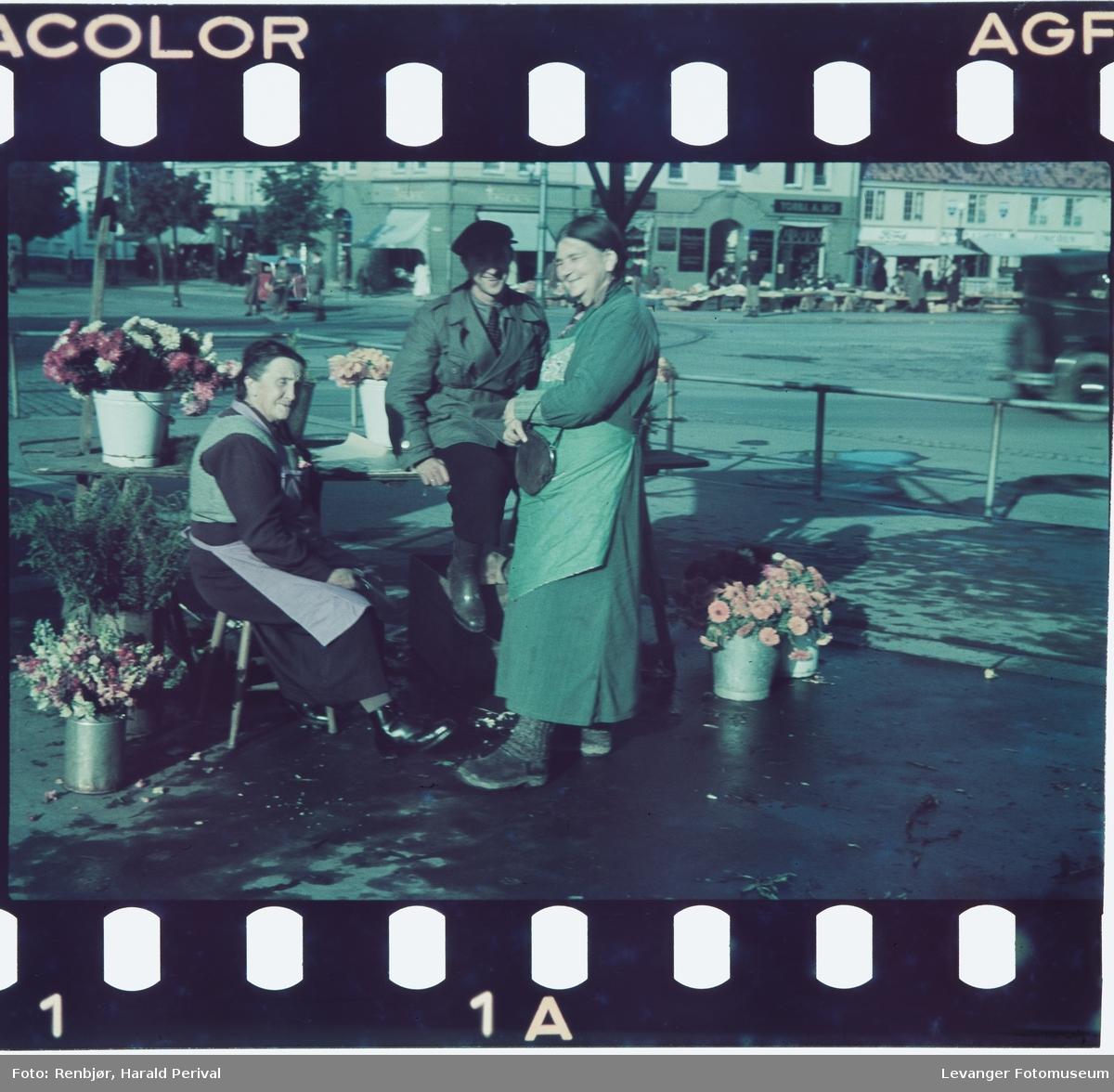 To kvinner selger blomster  på Torvet i Trondheim.
