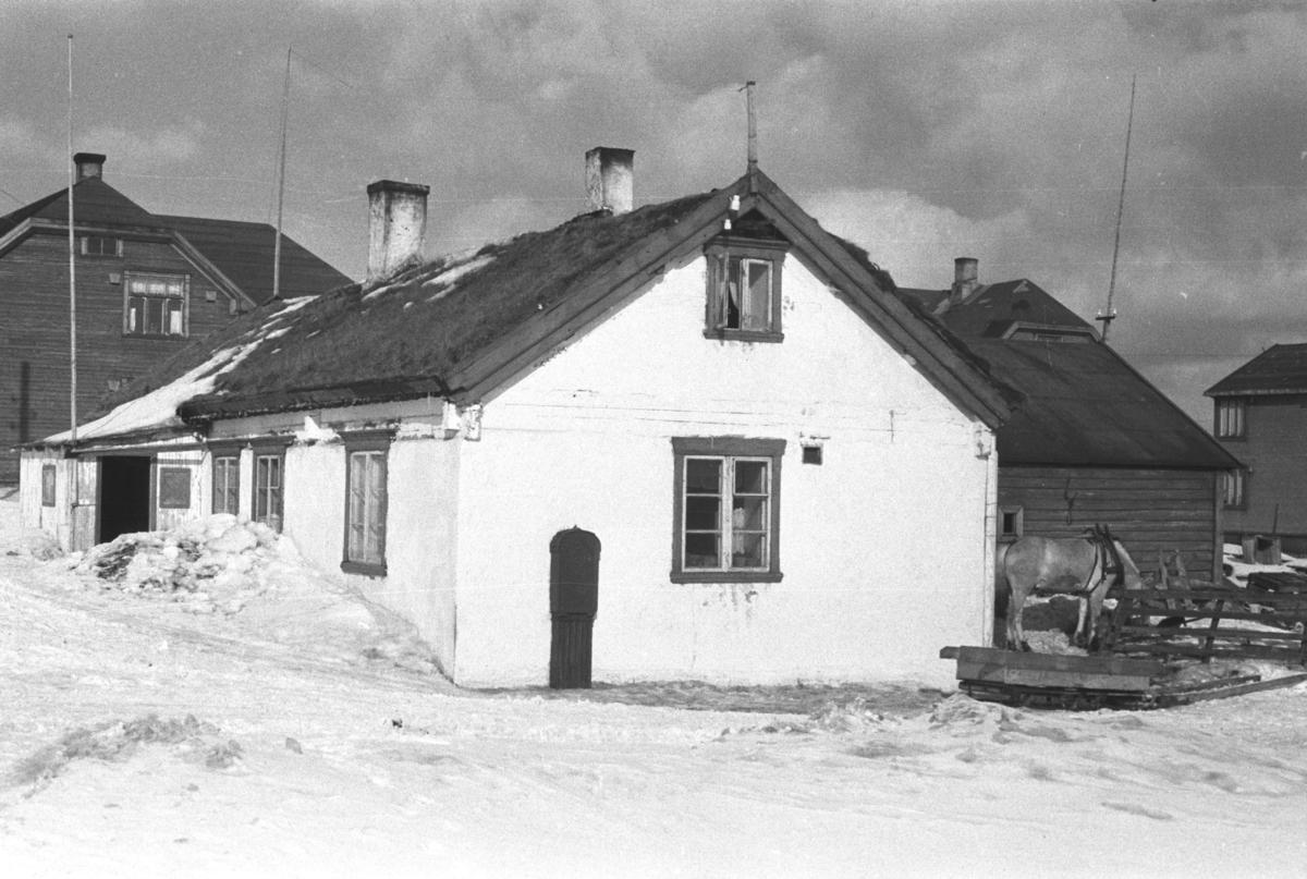 """Vardø fotografert påsken 1947. Huset på bildet var bygd under Napoleonskrigene, og var dermed et av de aller eldste bygg i Vardø utenfor festningsmurene. Det ble likevel revet på slutten av 1960-tallet. Gikk under navnet """"Skipperbrakka"""". Et lignende bygg, oppført på samme tid og kalt """"Kystvernbrakka"""", står fortsatt. En arbeidshest står til høyre for bygningen, fortsatt med seletøyet på og fraktvogna i forkant.   Arkitekt Ola Hanche-Olsen arbeidet ved Brente Steders Reguleringskontor i 1946. Hovedadministrasjon for gjenreisning av Nord-Troms og Finnmark ble lagt til Harstad og fikk navnet Finnmark kontoret. Landsdelen Nord-Troms og Finnmark blev oppdelt i syv distrikt med hver sin administrasjon. Honningsvåg, distrikt IV, skulle betjene Nordkapp, Lebesby, Porsanger og Karasjok kommune.  Ola Hanche-Olsen har tatt bildene. Han var født 13. mars 1920 i Borre, død 11. februar 1998 i Gjettum. Han hadde artium fra 1939, arkitekteksamen fra NTH 1946 og arbeidet deretter ved Finnmarkskontoret 1946–48 før han etablerte egen arkitektpraksis. Han debuterte som barnebokforfatter i 1974 med lettlest-boka """"Knut og sjørøverne"""", og skrev i alt 12 bøker.   Han var XU-agent 1944-45, og var også en aktiv fjellklatrer og friluftsmann. XU var den største og viktigste allierte etterretningsorganisasjonen i det okkuperte Norge under andre verdenskrig. Det meste av XUs virksomhet ble holdt hemmelig til 1988. Ola var gift med Solveig Hanche-Olsen (f. Falkenberg); de fikk 3 barn, blant dem matematikeren Harald Hanche-Olsen."""