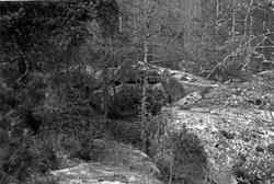"""Enligt text: """"Tanum Bräcke Grottan """"."""