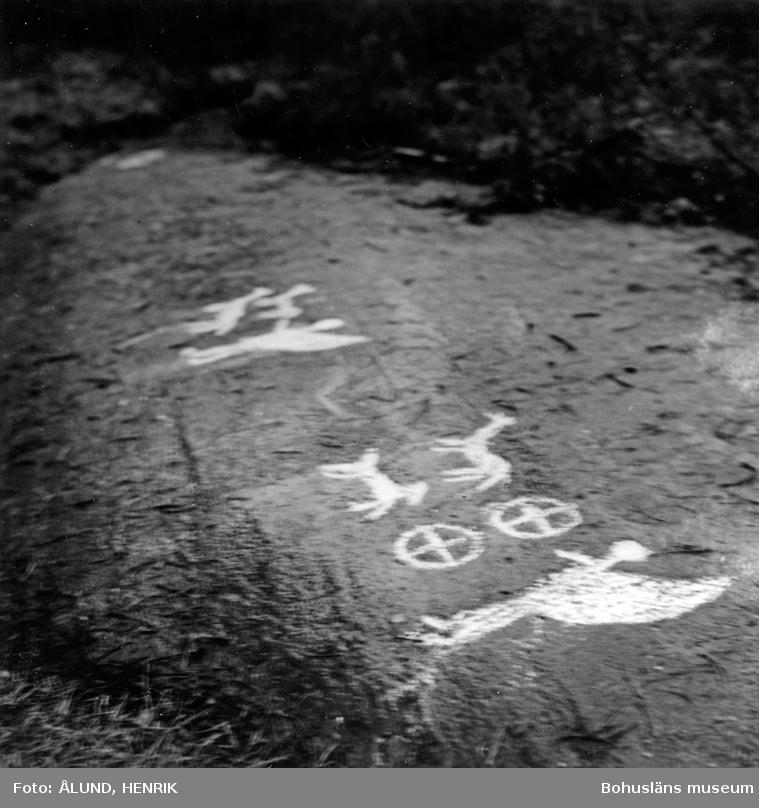 "Enligt text: ""Ånneröd, Skee. Foto: Strömstads Tidning 1967. H. Ålund""."