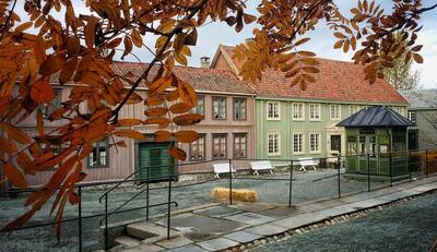 Hst_i_byen_Stein_Adler_Bernhoft.jpg. Foto/Photo