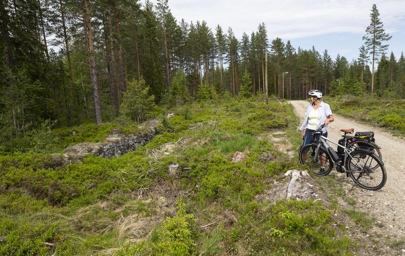 Renna til den sanerte hjulstua ved Svarte Torstein ses fra veien et stykke over gruva (13). (Foto/Photo)