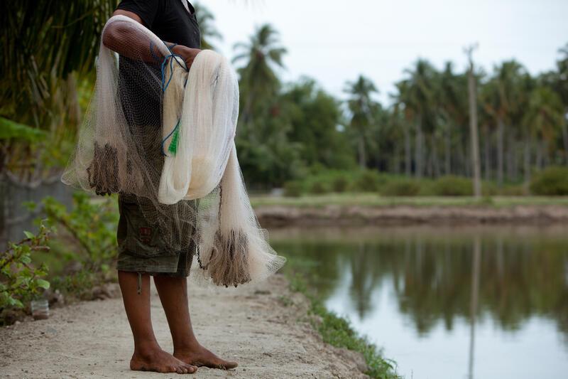 I mange deler av verden gir våtmarksområder viktig tilgang til matressurser.   Foto: Mike Lusmore (Foto/Photo)