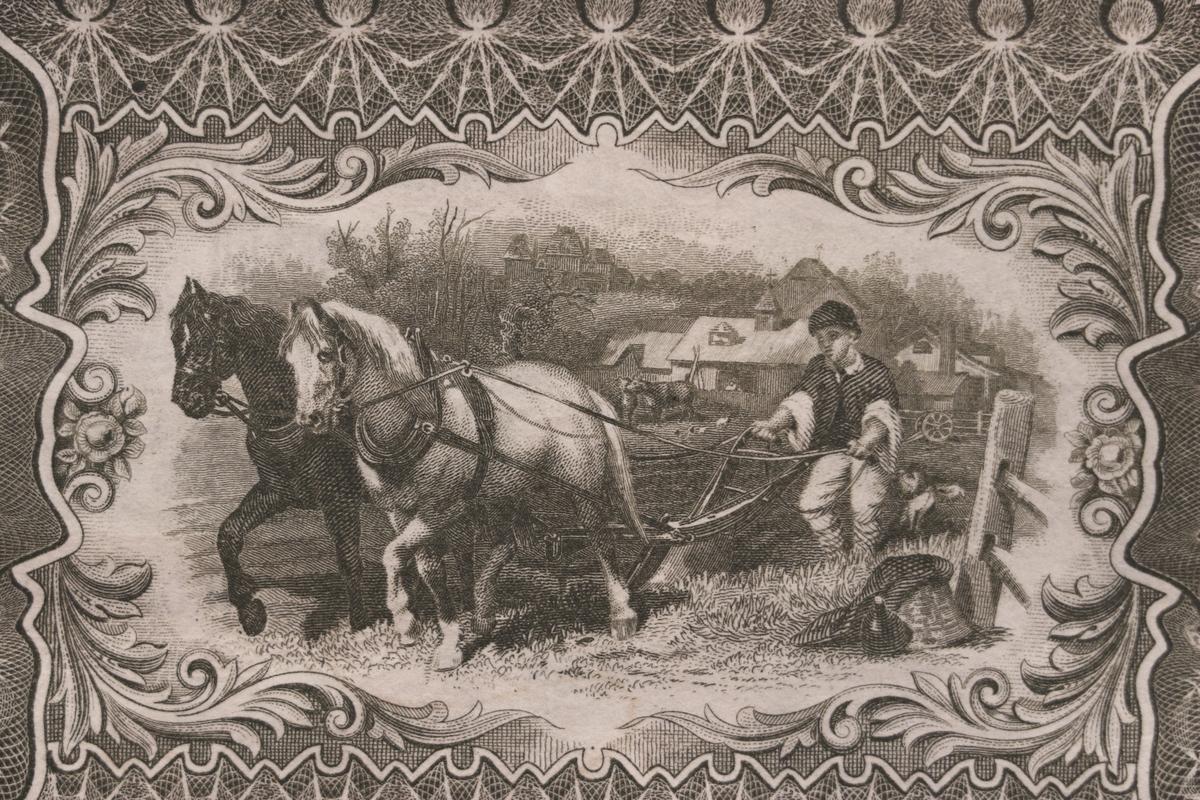 Tre sedlar på femtio kronor från Östergötlands Enskilda Bank från1894. Serienummer 12408, 19402 och 19403, tryckt till höger på sedeln. Framsidan har grå, röda och gräna färger. Tre signaturer på sedeln. Högst upp i mitten finns Östergötlands landskapsvapen. Längst till vänster är en bild på två kvinnor, en står och en sitter. Baksidan har en bild av två hästar förspända för en plog och är gråfärgad. En av sedlarna är makulerad med fyra hål i form stjärnor. En sedel är fastklistrad på en pappskiva, de andra två har en klisterlapp på sedeln där den suttit klistrad på en tavla. Två av sedlarna har hål som efter nålar. Tillstånd vid förvärv: Några vikningslinjer, men annars i gott skick. En av sedlarna har avskav efter att klisterlappar tagits bort..