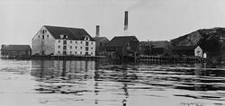 Nordland Kraftforfabrikk, Bodø. Produksjonskapasiteten var 2