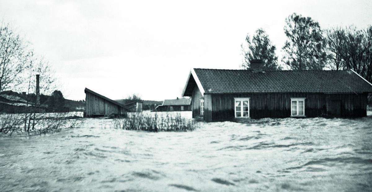 Foto: Anno Norsk Skogmuseum / Foto: Anno Norsk Skogmuseum