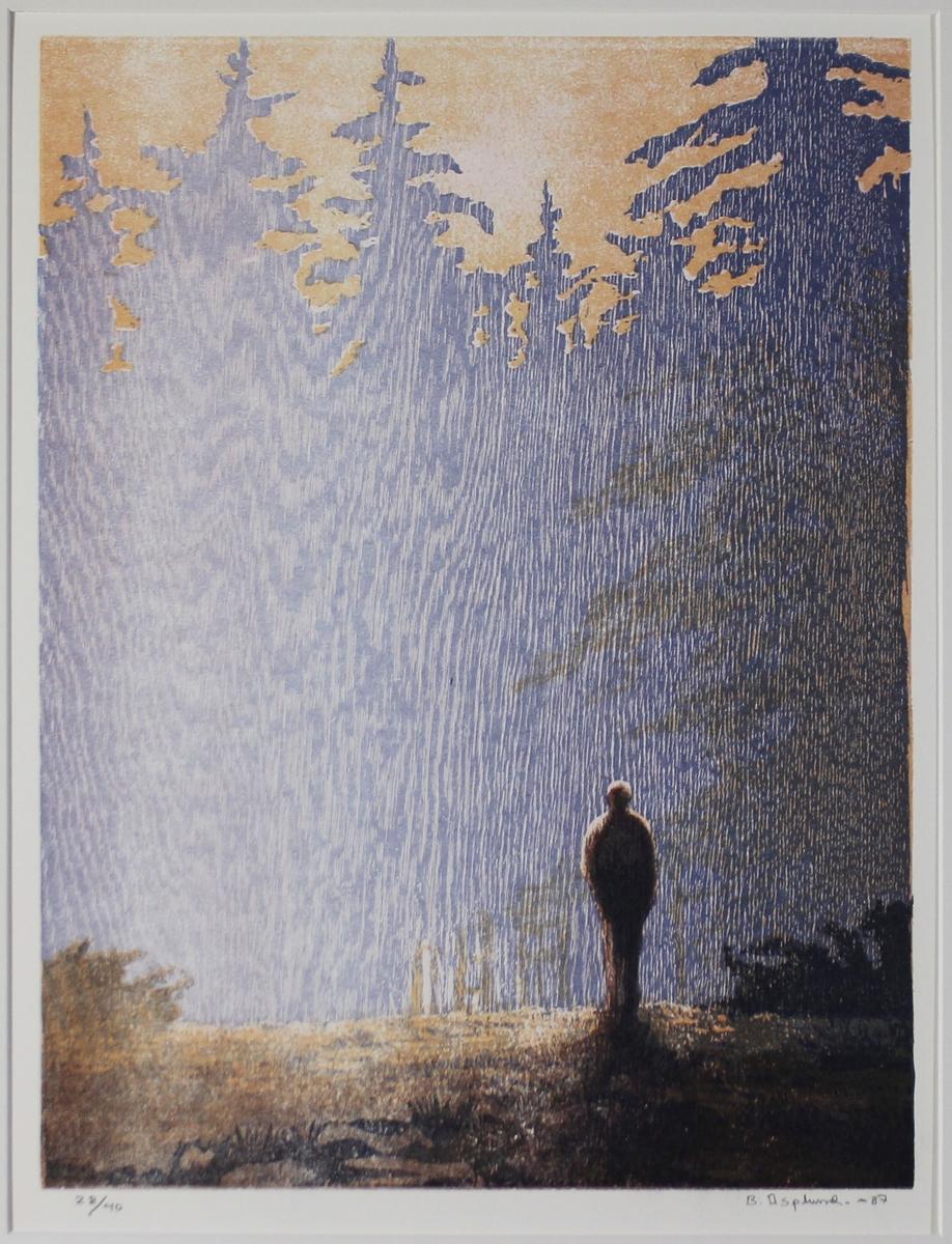 Man i skogen [Grafik]