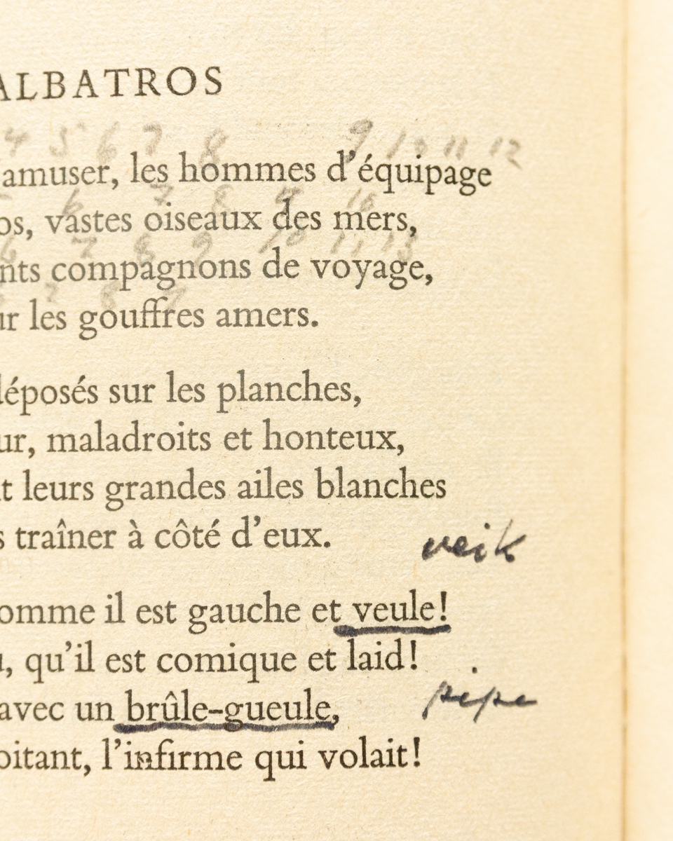 Charles Baudelaire: Selected Verse