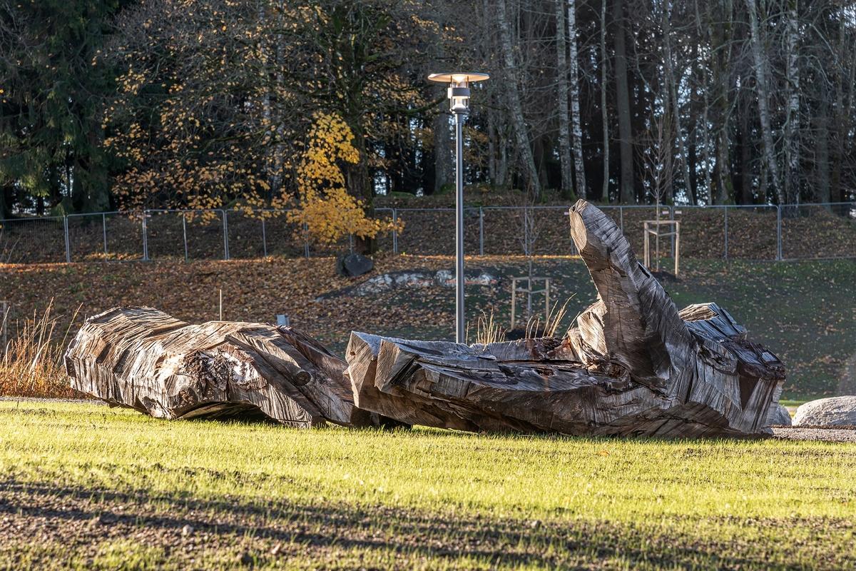 De to skulpturene av eik forestiller en utstrakt venstrehånd som åpent og søkende strekker seg mot himmelen, og en knyttet høyrehånd som mer målrettet og bestemt griper etter noe.  Hendene er plassert delvis med ryggen mot hverandre, men likevel henvendt til landskapet og området rundt. Skulpturene er formet av en motorsag og har et rått og direkte uttrykk. I tillegg til de to store hendene er fire mindre hender av bjørk og poppel plassert rundt om i parken. Disse er ment å brytes ned og bli til insekthoteller.  Begrepet 'doxa' kommer fra gresk og betyr «antagelse» eller «tro». Det kan romme subjektiv overbevisning som motsetning til sikker viten, og kan forstås som tanker, verdier og vaner som deles av bestemte grupper av mennesker.