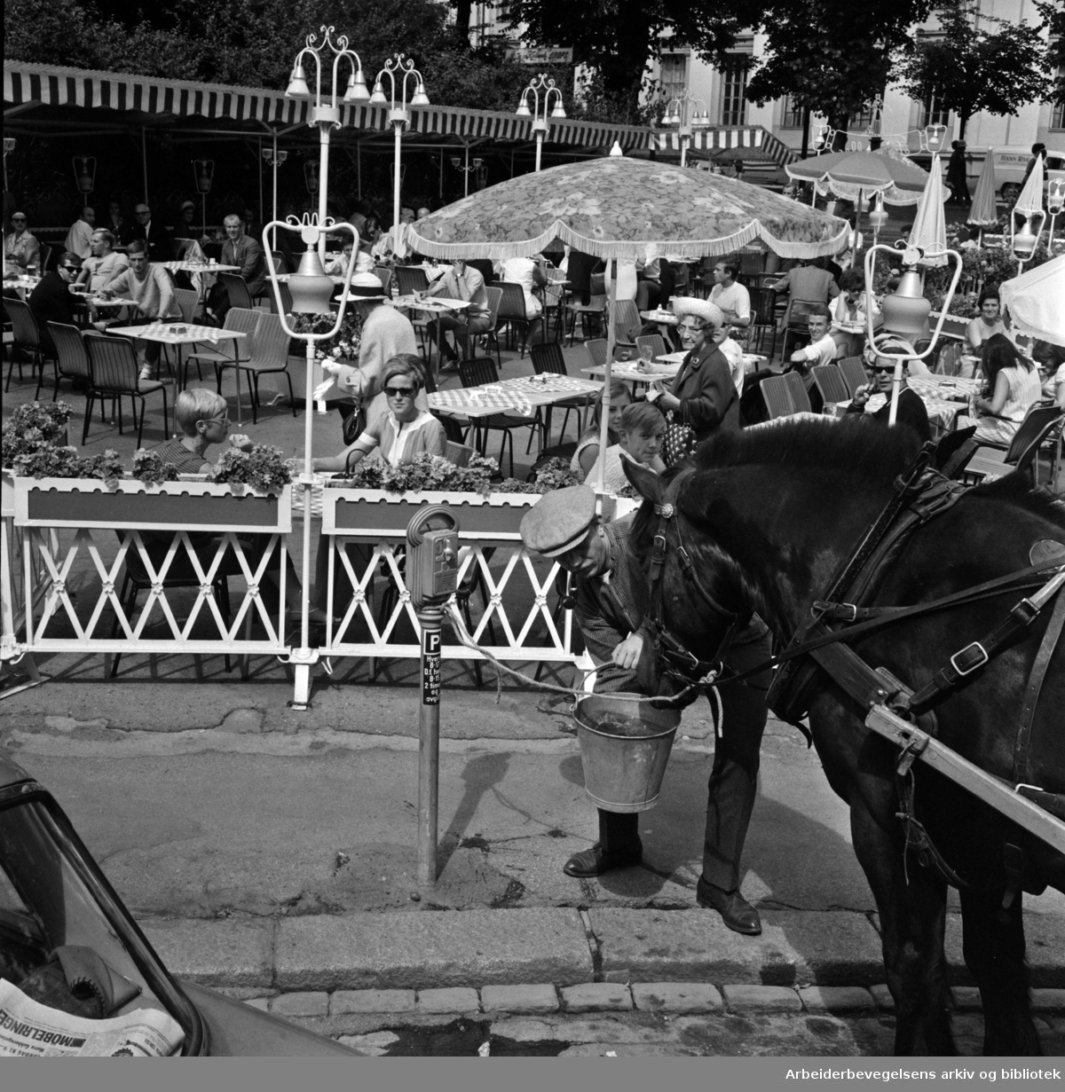 """På gampingtur i asfaltjungelen"". Arbeiderbladets journalist Bjørn ""Ausjen"" Johannessen og gampen ""Gubben"" utenfor friluftsrestauranten Pernille. Juli 1968"