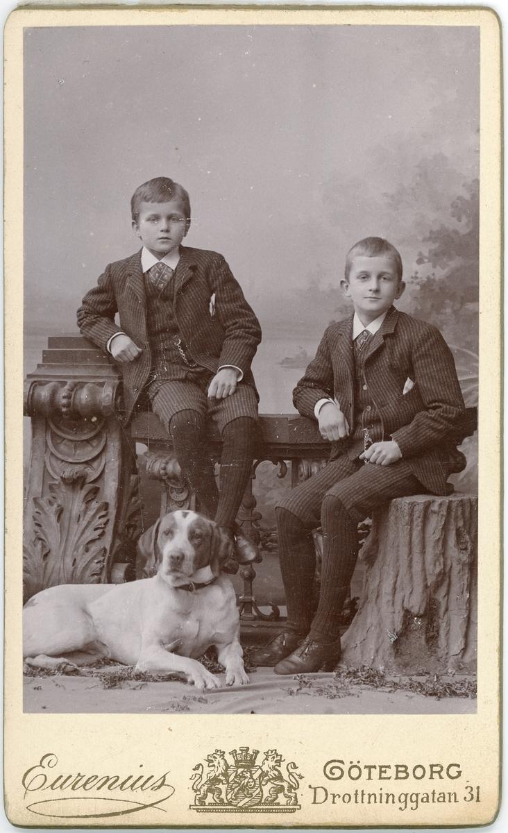 Kabinettsfotografi - två pojkar och en hund, Göteborg