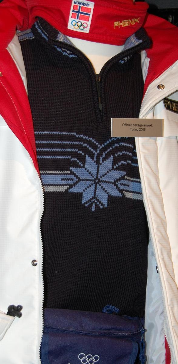 Blå genser med mønster. I mønsteret inngår det 8-bladsrode. Genseren hat glidelås på brystet.