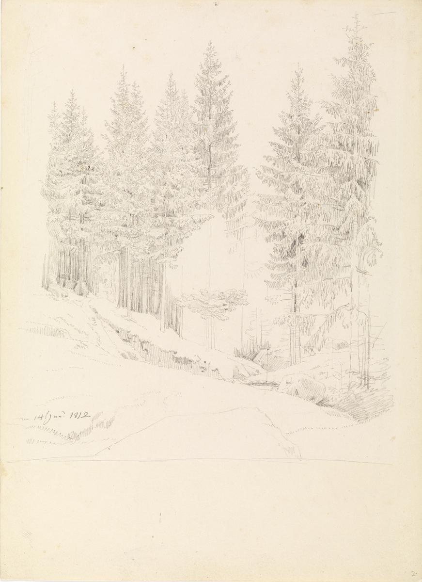 Fjellvei ved Wehlen [Tegning]