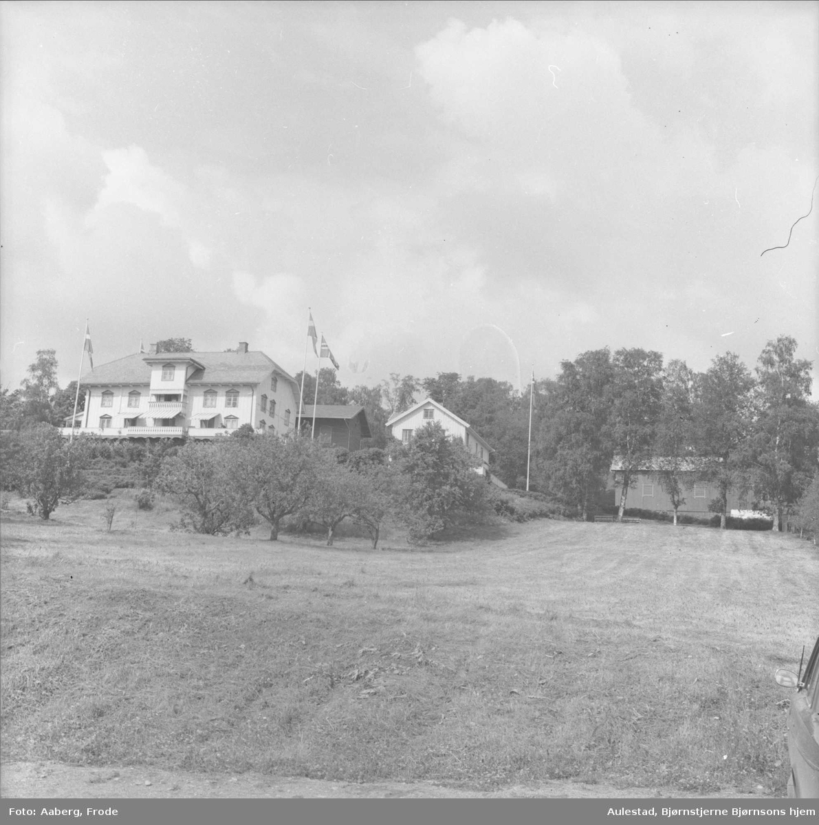 DOK:1980, Aulestad,