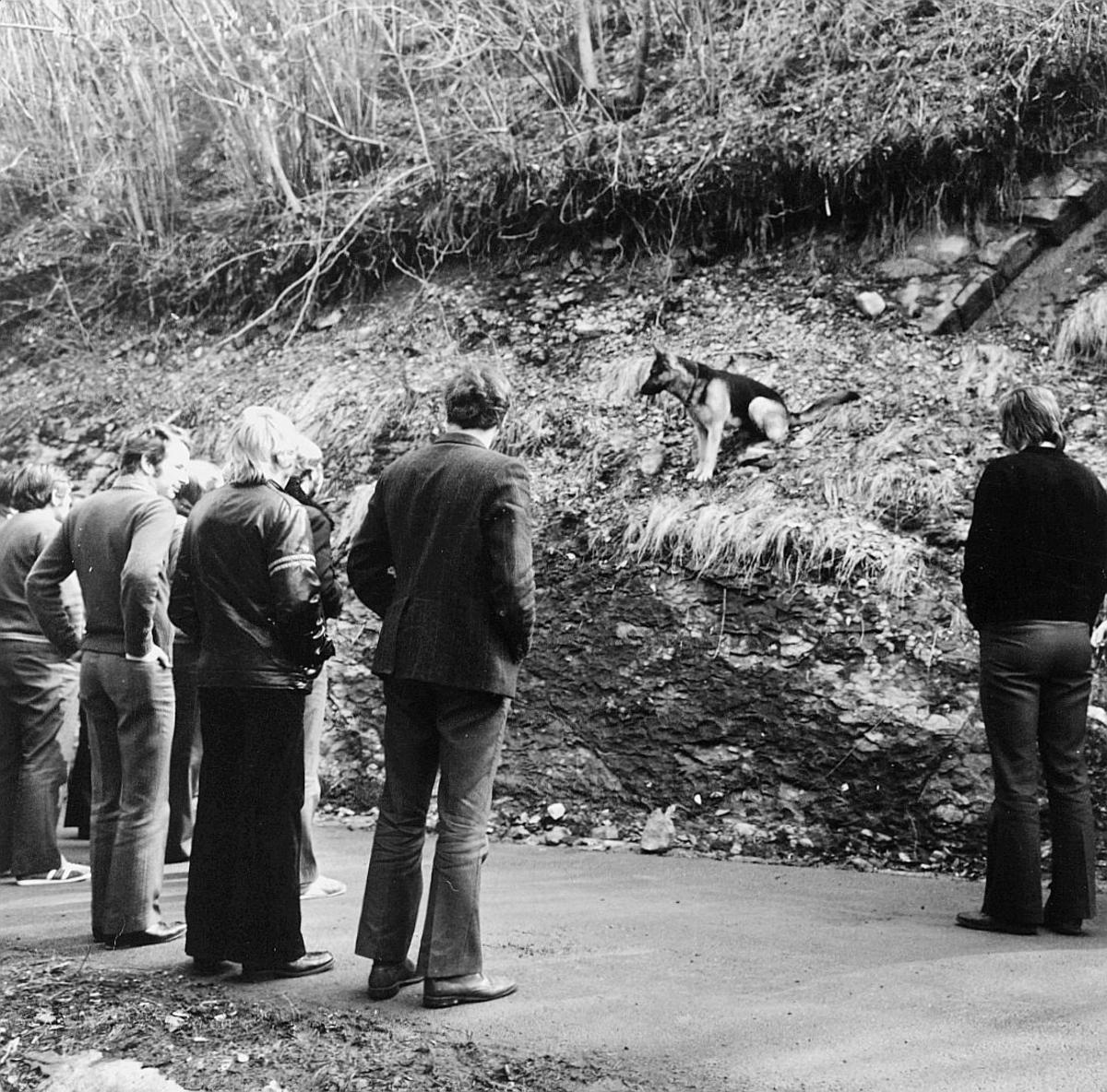 postskolen, Sjøstrand bad, april 1974, eksteriør, menn, 1 hund