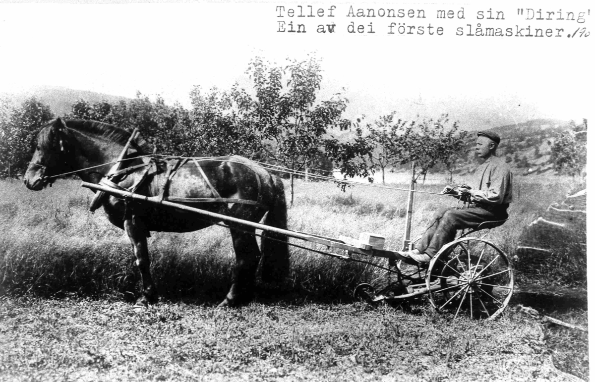 Bilder fra Birkenes kommune Tellef Aanonsen ca 1905