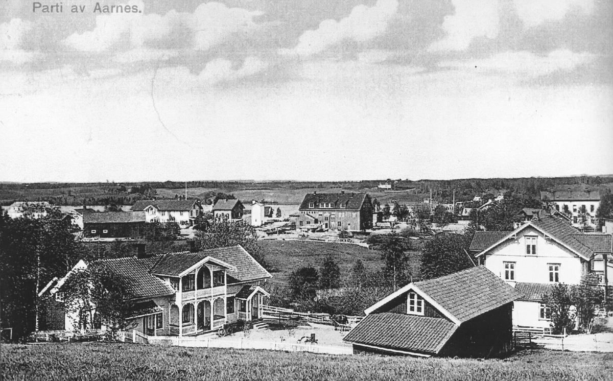 Parti fra Årnes.