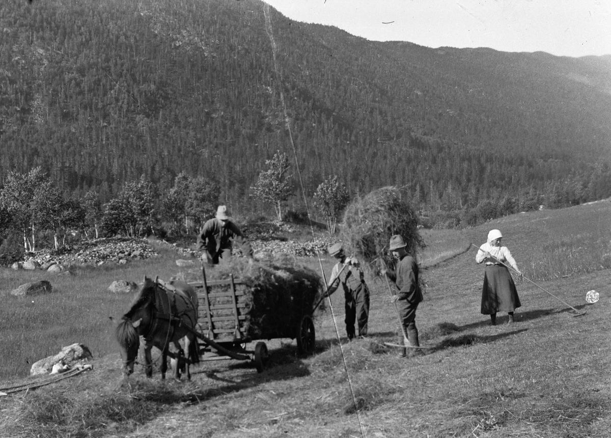 Høyonn med hest og vogn.