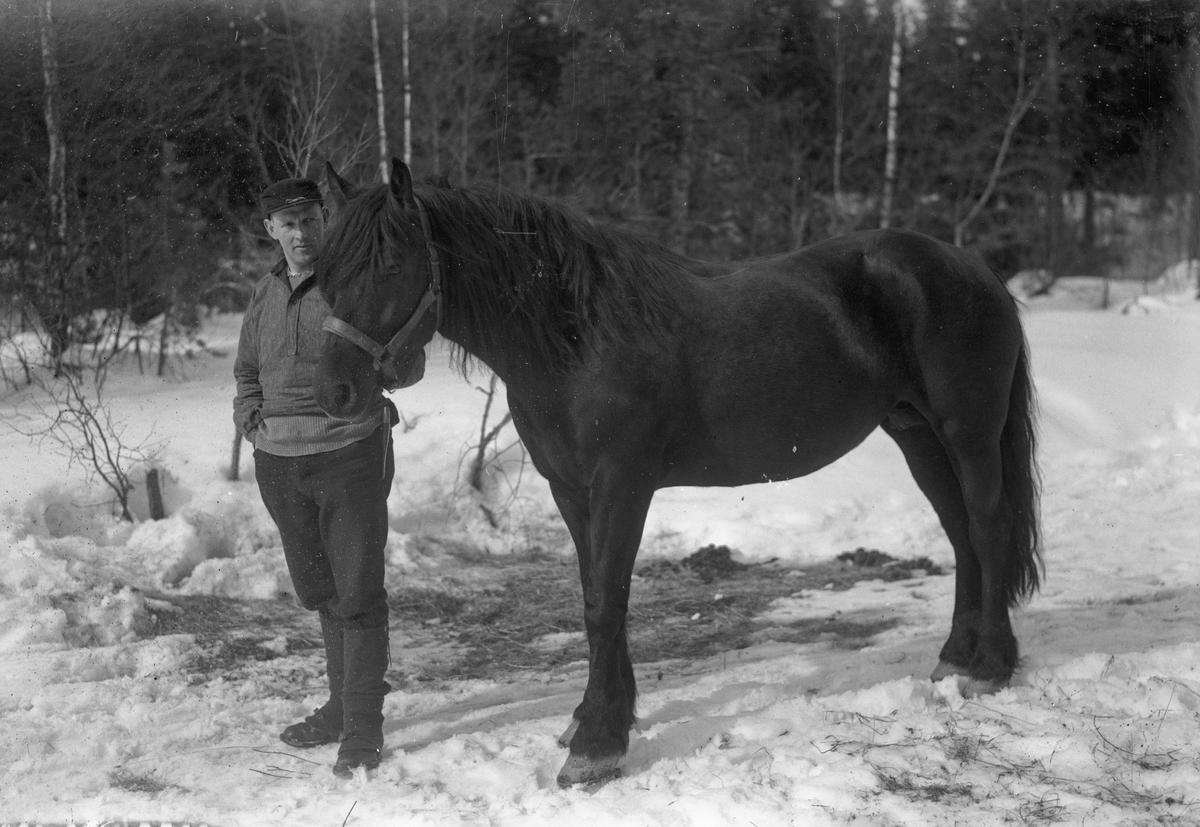 Mann og hest.