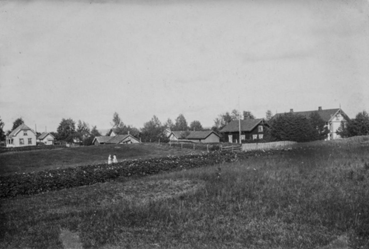 Fuglerudsteie i 1924.