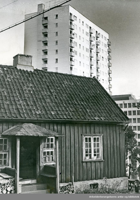 Sandakerveien 2 på Torshov. .Hønse-Lovisas hus med ett av høyhusene i Thorvald Meyers gate i bakgrunnen,.august 1967