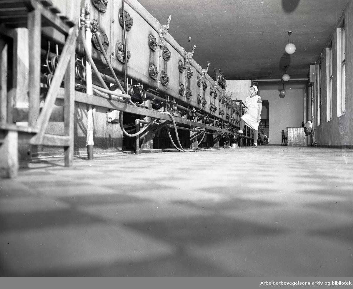 Sætre Kjeksfabrikk,.1949