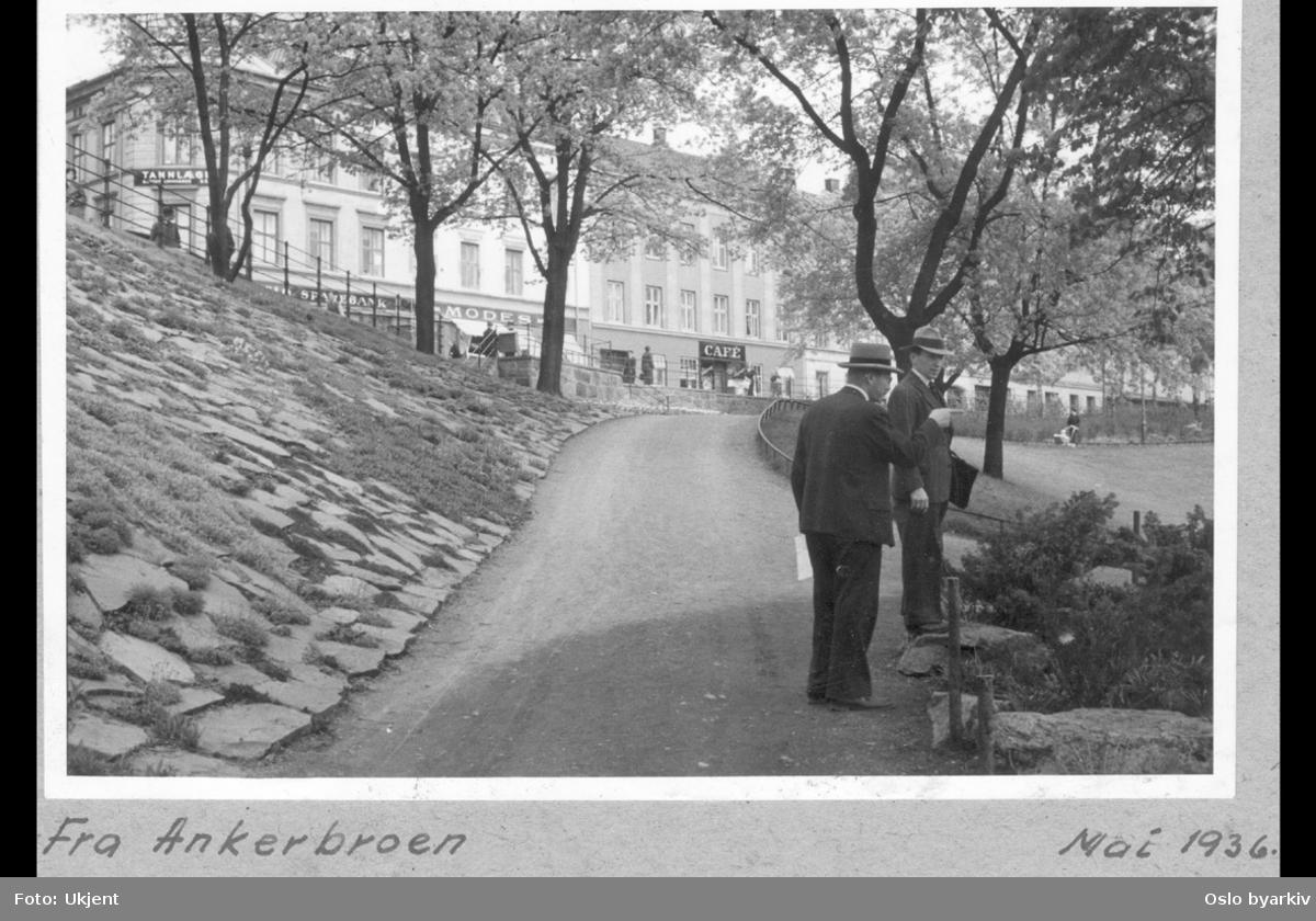 Parkvei på nedsiden av brua, i østre parkbelte langs Akerselva og Nybrua. To representanter i fra Parkvesenet på befaring. Krysset Markveien med Søndre gate i bakgrunnen. Bildet tatt i mai måned.