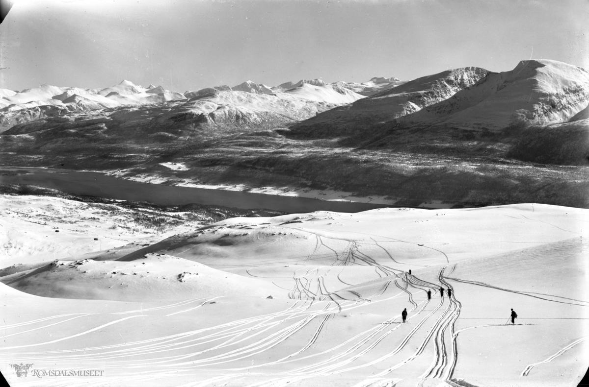 Skispor på Moifjellet
