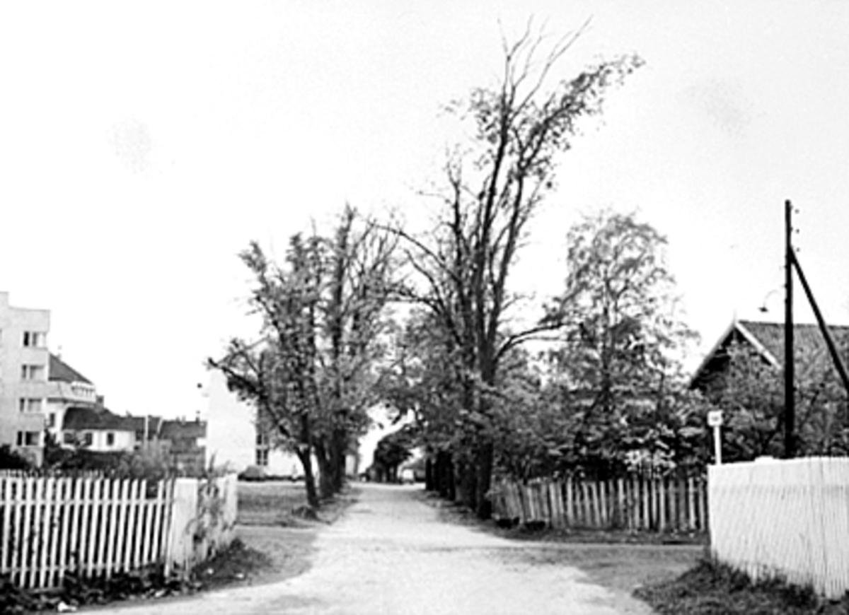 FRA KRYSSET SVERDRUPSGATE/PARKGATA. , PARKGATA 42, CHRISTIEBYGGET I BAKGRUNNEN