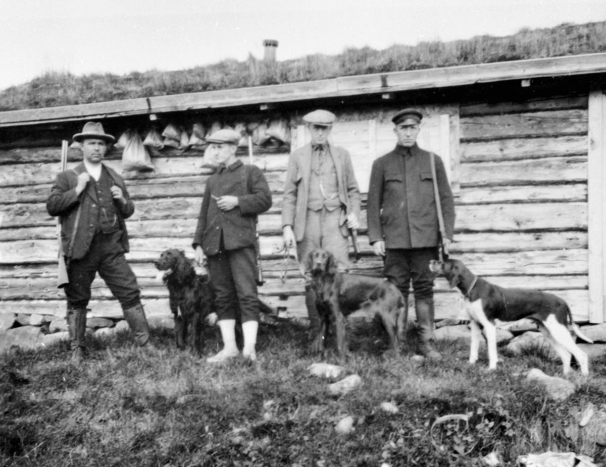 4 menn med gevær og fuglehunder. Jaktlag i Løvlia, Ringsakerfjellet.