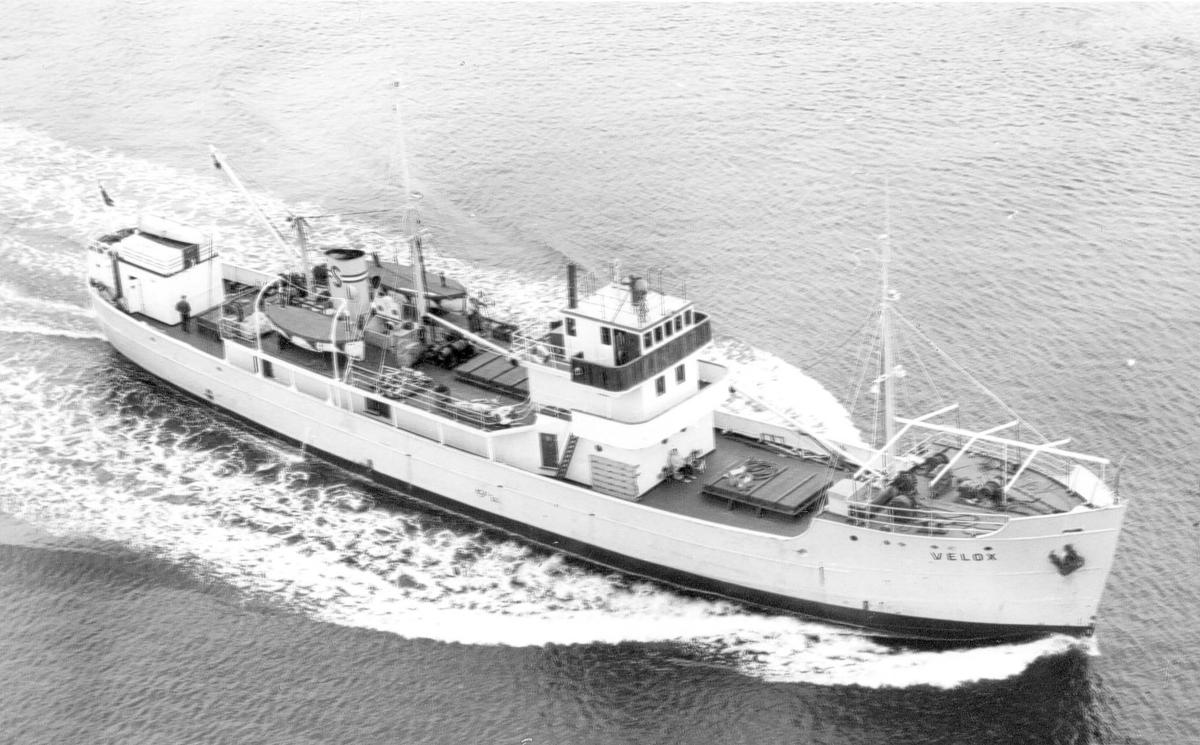 Skip - M/S Velox i åpent farvann