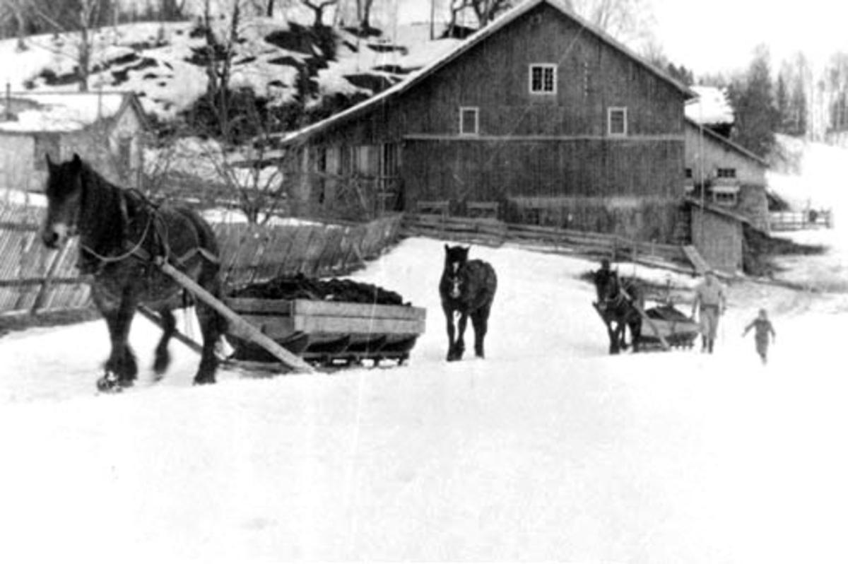 Møkkjøring med hest og slede i Askehagen, Stavsjø. Den gamle låven i bakgrunnen.