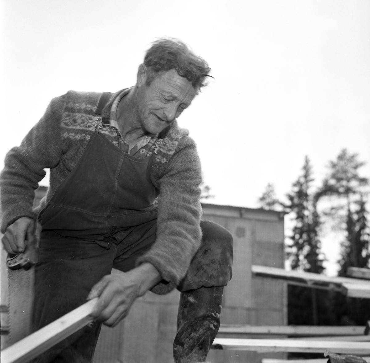 Eivind Bustad