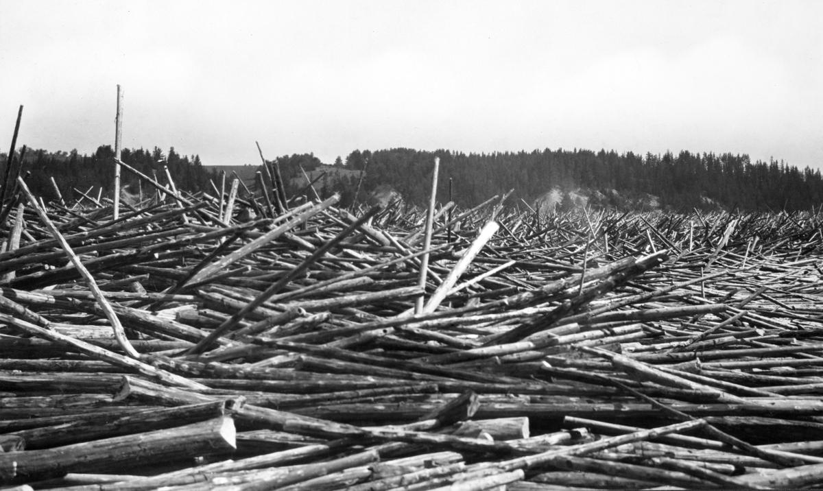 Tømmerfløting