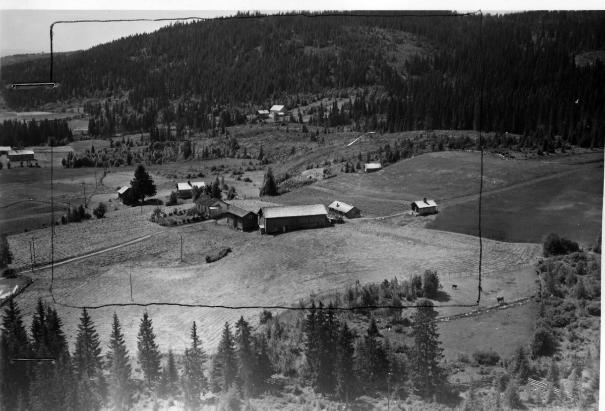 Stenhammer (Gnr 124/1) i Nordskogbygda. Nordskogbygdvegen 418. Rett bak, til venstre for Stenhammer ligger Sandaker (tidliger Gnr 124/20). Helt ute i venstre bildekant skimtes Brænden (Gnr 123/2).