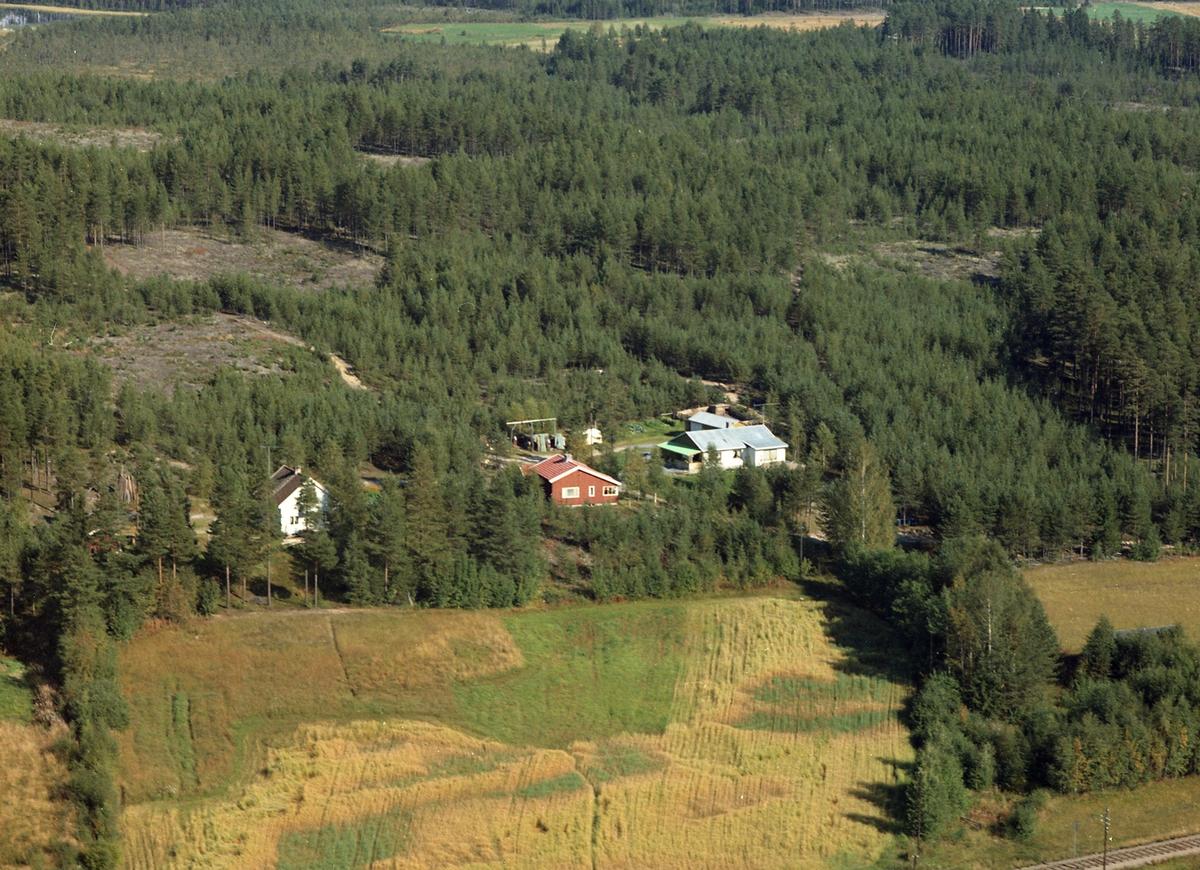 Furuhaug og Sandmo