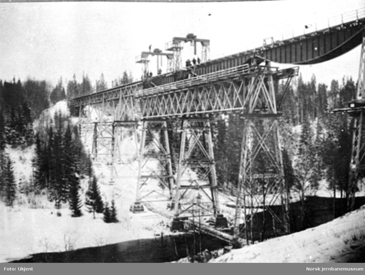 Ombygging av Hobøl viadukt; utskifting av 6. spenn, bilde 3