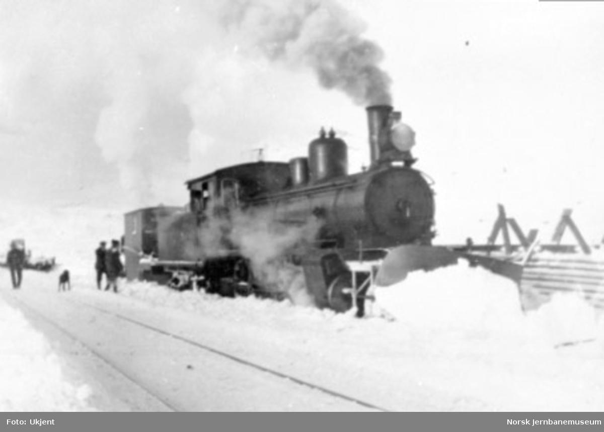 Damplokomotiv av type 21 med stor frontplog og sporrenser, trolig på Bergensbanen