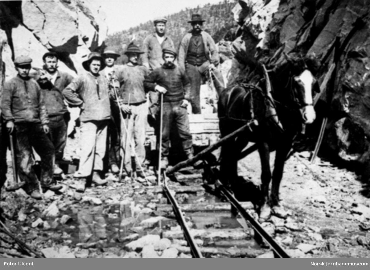 Et arbeidslag på åtte mann og en hest i en skjæring