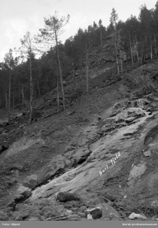 Jordskred ved Verma 9.6.1926 : sett oppover skredfronten fra midtre og øvre linjebrudd på jernbanen