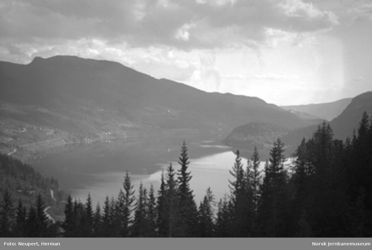 Utsikt fra Bergensbanen ved Krøderen
