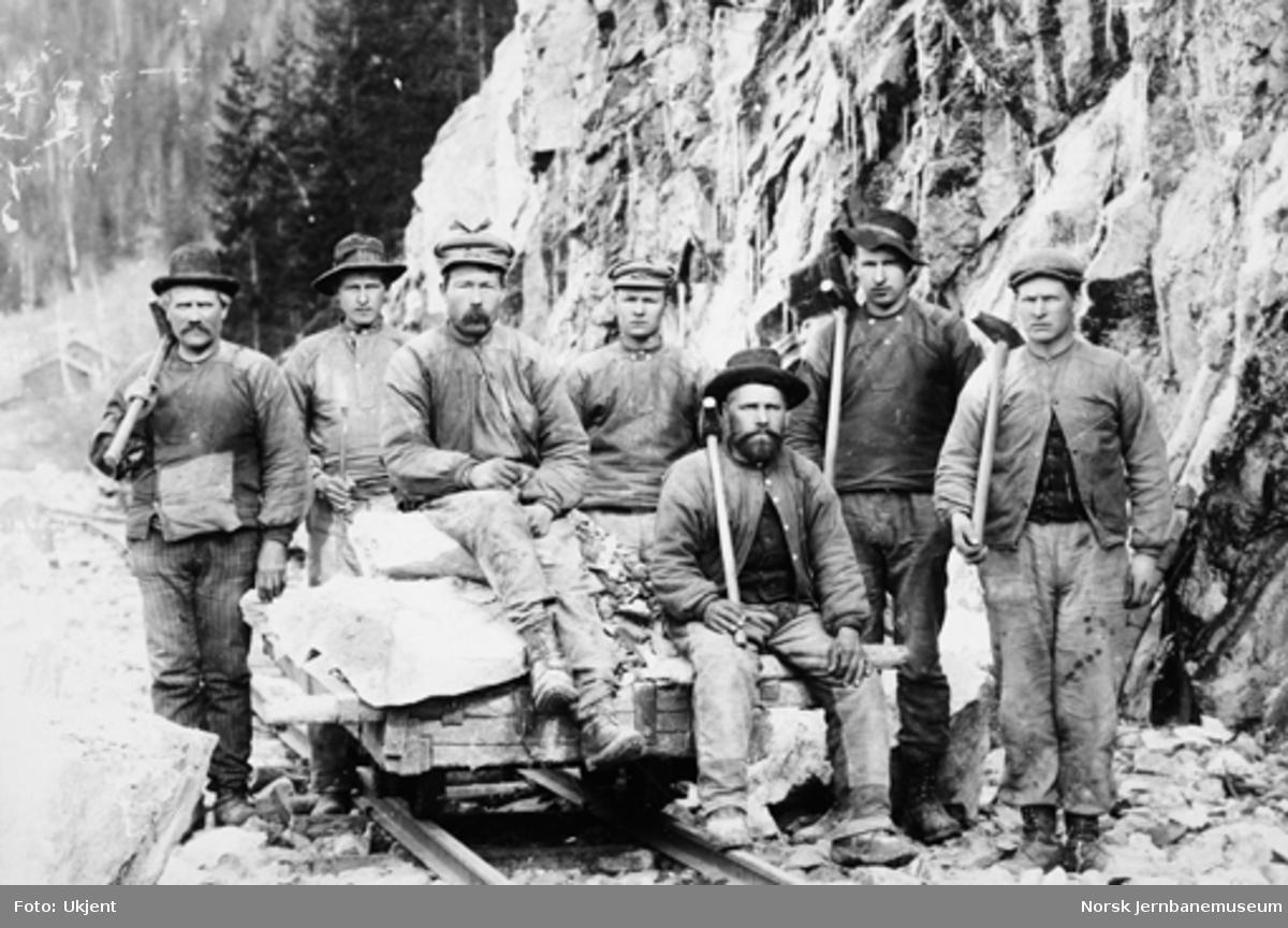 Sju anleggsarbeidere med steintralle i Hallingdal