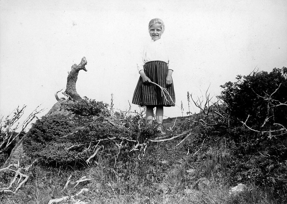 Pike med kvist i landskap, ukjent sted. Serie tatt av Robert Collett (1842-1913), amatørfotograf og professor i zoologi.