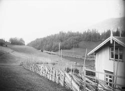 Hvåle, Nore, Numedal, Nore og Uvdal, Buskerud, 1906. Hvitt h