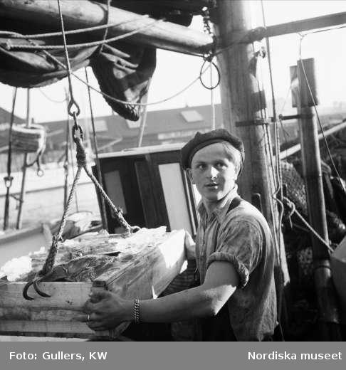 Fiskare lossar fisk från båten GG 478 Saron